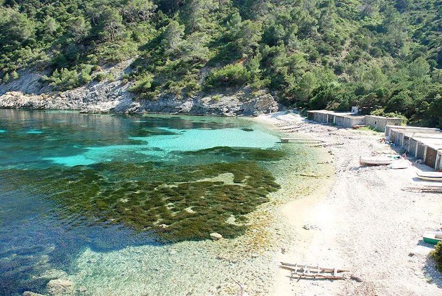 西班牙伊维萨岛卡拉伦特里斯卡 (Cala Llentrisca) 海滩.jpeg
