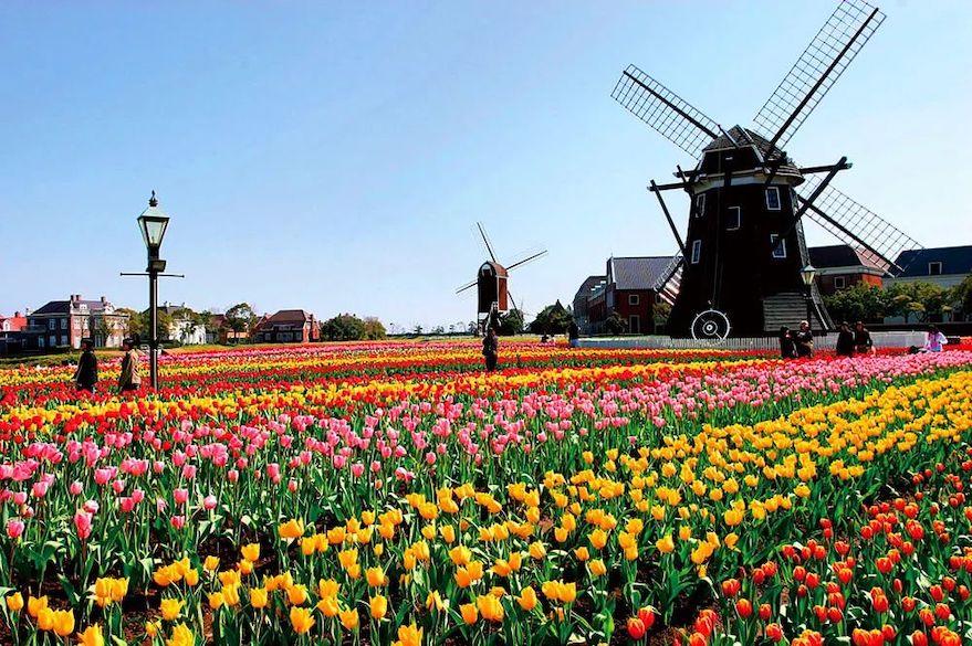 荷兰,阿姆斯特丹.jpeg