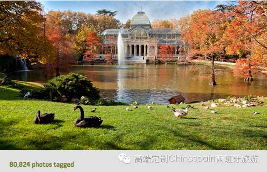 Parque del Buen Retiro 丽池公园.jpeg